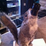 Squirrel bottle