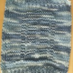 TARDIS Dishcloth